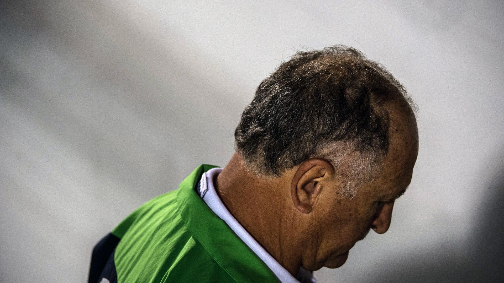 Luiz Felipe Scolari, técnico do Palmeiras