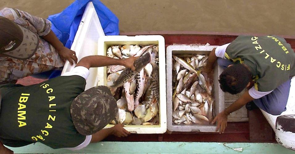 04.set.2012 [ foto de arquivo] - Agentes da Polícia Federal e do Ibama (Instituto Brasileiro do Meio Ambiente e dos Recursos Naturais) inspecionam barcos no rio Javari, na fronteira entre o Brasil e o Peru. Fiscais buscam o controle da pesca do Tucunaré, peixe da região amazônica que está em extinção