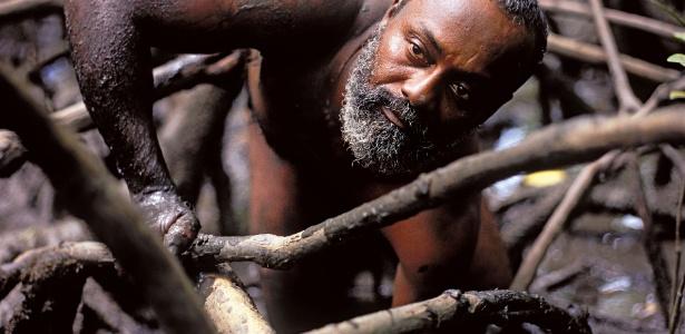 Imagem do livro Biomas brasileiros - retratos de um país plural