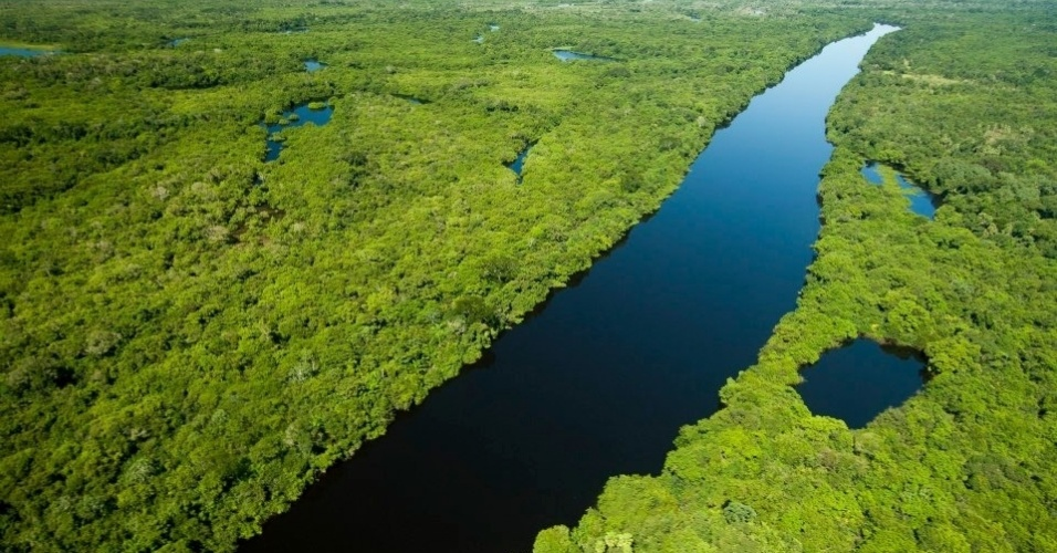 Vista aérea do Pantanal, nas proximidades do rio Negro, no Mato Grosso