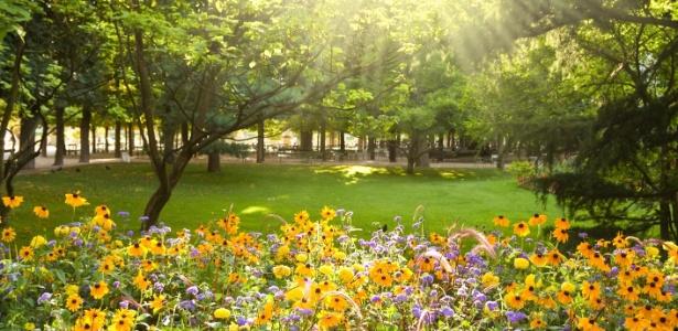 Maio, época Que Marca O Início Da Primavera No Hemisfério Norte, é ~ Casamento Estacao Jardim