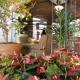 15ª Fiaflora ExpoGarden apresenta soluções técnicas para jardinagem