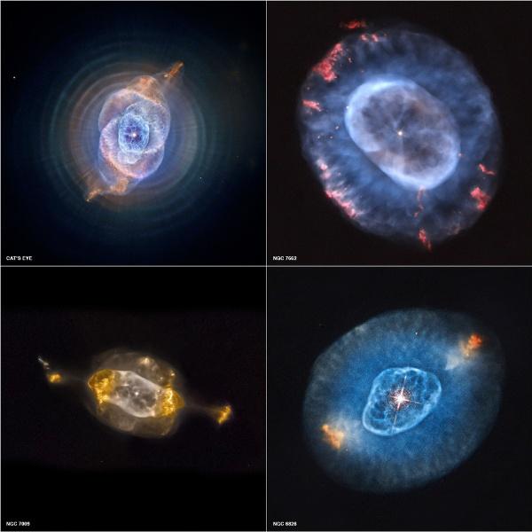 """11.out.2012 - Imagem reúne quatro nebulosas planetárias que são foco do primeiro estudo sistemático de objetos como estes no Sistema Solar, conduzido com ajuda do Observatório Chandra, da Nasa. As nebulosas planetárias NGC 6543 (ou """"Olho de Gato""""), NGC 7662, NGC 7009 e NGC 6826 demonstram uma fase da evolução das estrelas pela qual o Sol irá passar nos próximos bilhões de anos"""