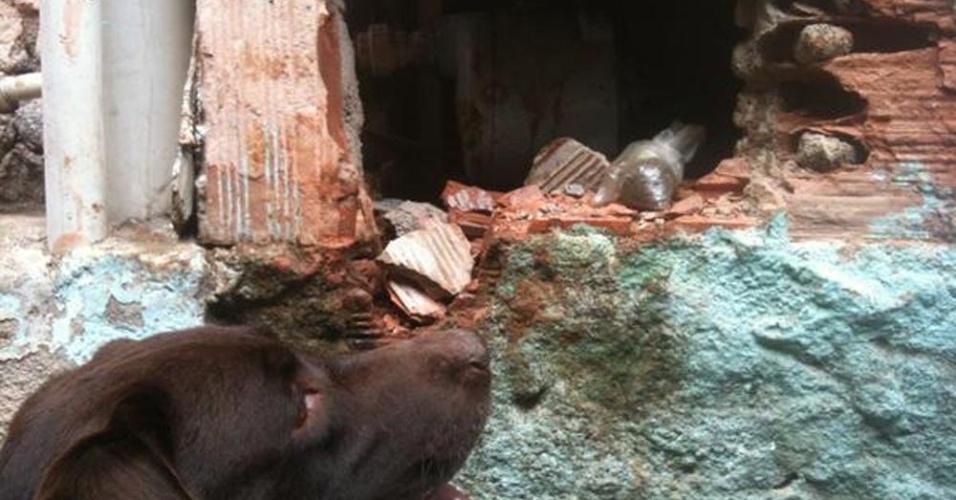 22.out.2012 - Droga é encontrada por cão farejador em caixa da bomba d'água na favela do Jacarezinho, Rio de Janeiro