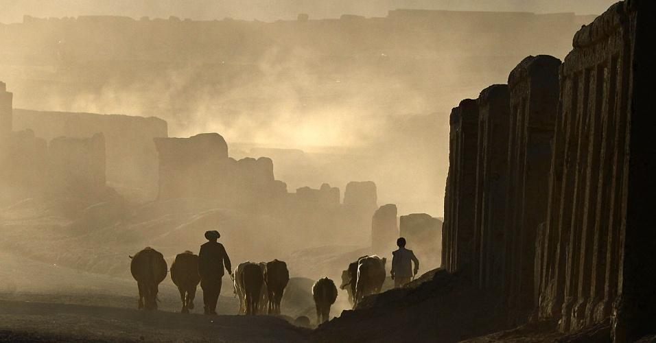 22.out.2012 - Pastor hazara caminha com seu rebanho em Bamiyan, cerca de 200 quilômetros (124 milhas) a noroeste de Cabul, no Afeganistão