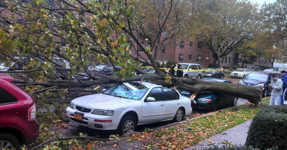 29.out.2012 - Árvore cai sobre carros em Nova York durante os primeiros efeitos do furacão Sandy, que se aproxima da cidade. O transporte público local, além de lojas, prédios governamentais, universidades e outros estabelecimentos foram rechados
