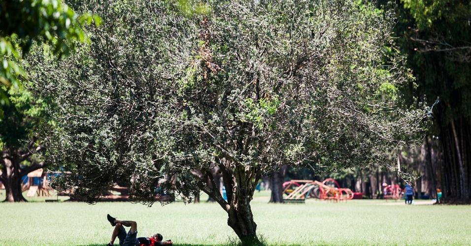 29.out.2012 - Paulistano aproveita segunda-feira de sol e temperaturas acima dos 30°C para relaxar no parque do Ibirapuera, em São Paulo