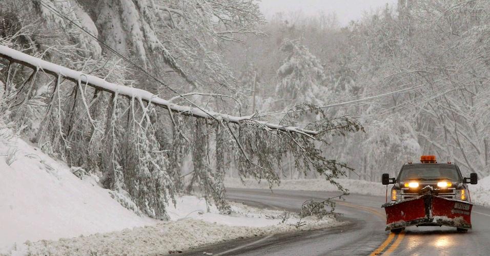 30.out.2012 - Caminhão removedor de neve passa ao lado de uma árvore derrubada pela forte nevasca causada pelo furacão Sandy no condado de Garrett, Maryland, ao sul de Nova Jersey. A onda de frio vinda do norte aproveitou as zonas de baixa pressão na periferia do furacão para derrubar as temperaturas em 20°C em poucos dias