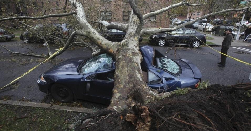 31.out.2012 - Imagem de terça-feira (30) divulgada hoje mostra árvores caídas sobre carros no bairro do Queens, área de Nova York onde aconteceram incêndios e alagamentos após a passagem do furacão Sandy pela cidade
