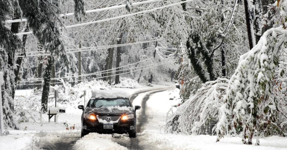 8.nov.2012 - Motorista dirige por estrada coberta de neve em Dix Hills, no sul do Estado de Nova York. A tempestade de inverno desta quarta-feira (7) deixou 375 mil casas sem luz nos Estados de Nova York e Nova Jersey, os mais afetados pela passagem do furacão Sandy, há pouco mais de uma semana
