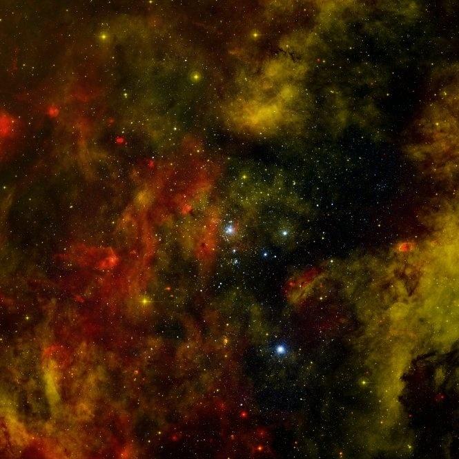8.nov.2012 - O observatório Chandra, da Nasa (Agência Espacial Norte-Americana), fez novo registro da emissão de raios X do aglomerado Cygnus OB2, a 5.000 anos-luz de distância da Terra, para entender melhor como essas fábricas de estrelas se formam e evoluem no universo. Os astrônomos detectaram mais de 1.700 locais quentes no aglomerado, sendo 1.450 estrelas massivas e brilhantes na faixa etária entre 1 a 7 milhões de anos