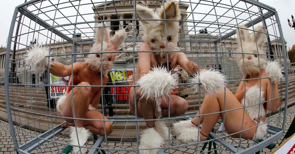 12.nov.2012 - Ativistas de direitos dos animais protestam dentro de uma gaiola vestidos de coelhos nesta segunda-feira (12), em Viena na Áustria. Eles exigem o fim dos testes de produtos químicos em animais