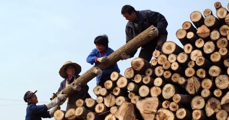 29.nov.2012 - Agência de Pesquisa Ambiental, uma ONG britânica, acusa a China de comprar madeira de origem duvidosa e incentivar o comércio ilegal e o desmatamento das florestas tropicais. Segundo relatório da instituição, mais da metade das importações chinesas vêm de países com má fama quanto ao corte ilegal, sendo Mianmar, Papua Nova Guiné e Moçambique os exemplos mais flagrantes