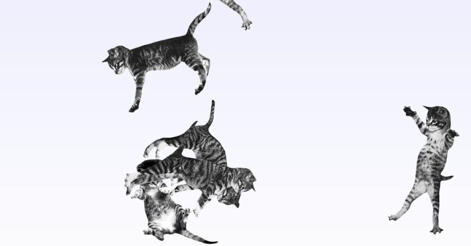 """Nem só de sites de serviços, redes sociais e notícias vive a internet. Também existe (muita) coisa inútil na rede. Na imagem, um site com gatos que ficam pulando na tela. Clicando no botão """"Make it rain"""", o usuário pode fazer """"chover gatos"""""""