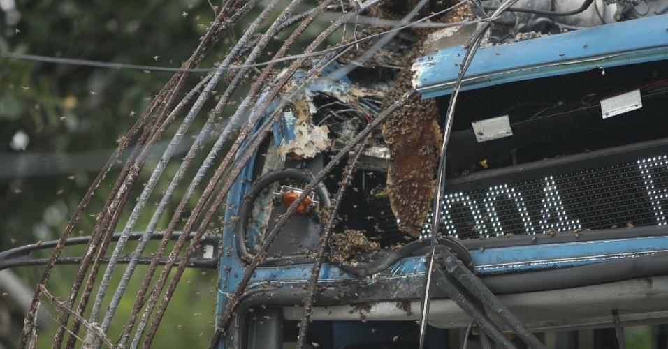 30.nov.2012 - Um ônibus derrubou um poste em Belo Horizonte, no bairro Bandeirantes, e terminou atingindo uma colmeia de abelhas que estva no topo da fiação. Os insetos atacaram os passageiros após o acidente