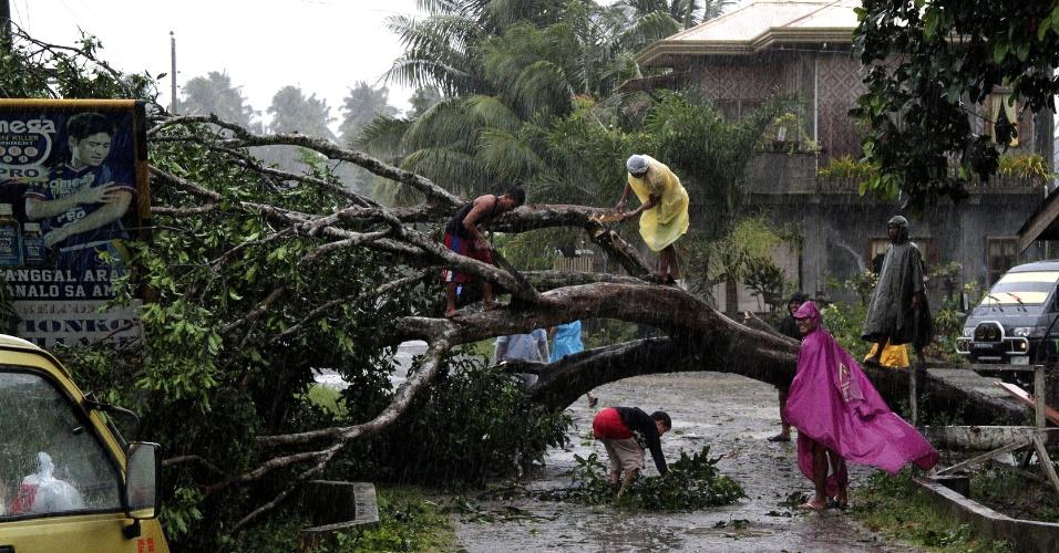 4.dez.2012 - Grupo de pessoas tenta cortar galhos de uma árvore arrancada pela raiz com a passagem do tufão Bopha pelo sul das Filipinas. Ao menos 54 mil pessoas ficaram desabrigadas com os ventos entre 175 e 210 km/h e as fortes chuvas
