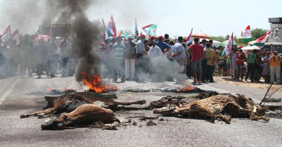 6.dez.2012 - Agricultores da associação comunitária do sítio da Boa União realizam protesto na BR 316 em Ouricuri (PE). A reivindicação é por sementes, ampliação do chapéu de palha, e o perdão de dívidas