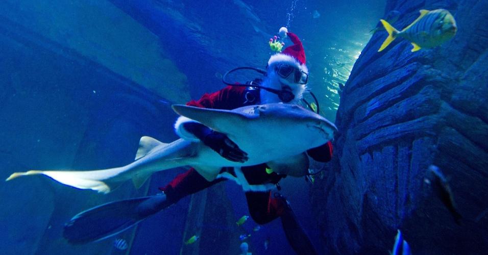6.dez.2012 - Papai Noel mergulha com um tubarão no aquário Sea-Life, em Munique, na Alemanha