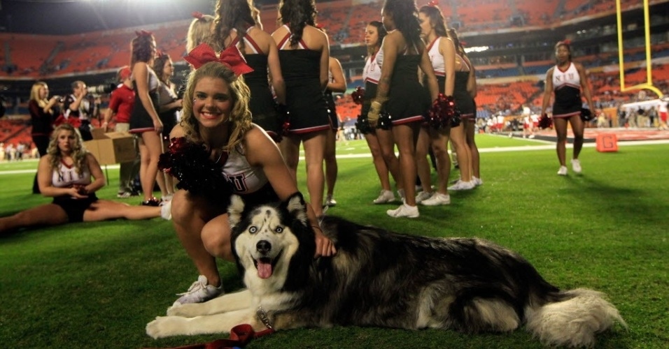 01.jan.2013 - Cheerleader do Northern Illinois Huskies, de futebol americano universitrio, faz carinho no mascote da equipe
