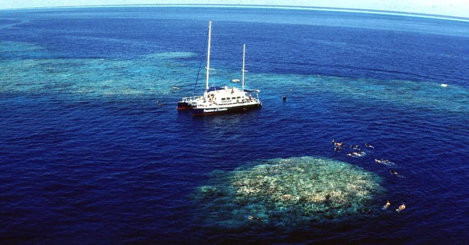 """3.jan.2013 - Turistas nadam ao redor de corais no norte da Austrália. Grupo da Universidade de Queensland anunciou nesta quinta-feira (3) ter descoberto uma """"nova camada"""" de arrecife abaixo da Grande Barreira de Coral. Os cientistas estavam mapeando o local para catalogar novas espécies marinhas, mas acabaram encontrando os corais a 125 metros de profundidade"""