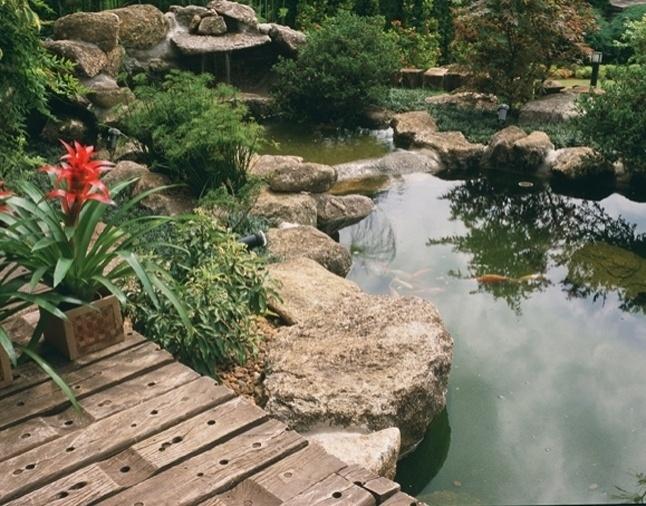 A gruta ao fundo, as pedras rústicas e a variedade de vegetação fazem o espelho d'água criado por Eduardo Luppi parecer natural, noção reforçada pela presença das carpas