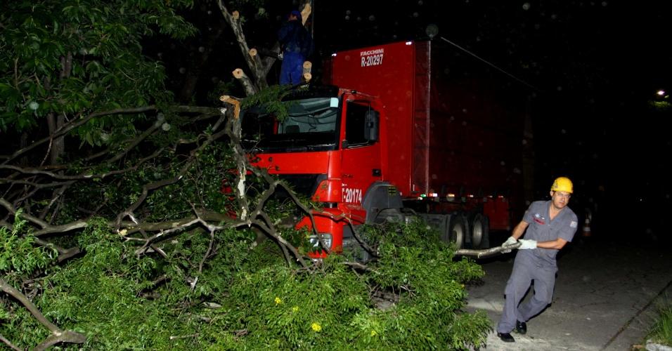 12.jan.2013 - Uma árvore de grande porte caiu em cima de um caminhão na avenida Salim Antônio Curiati, na zona zul de São Paulo, na madrugada deste sábado (12). Ninguém se feriu
