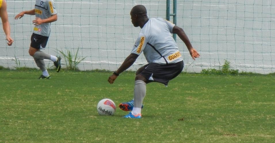 Seedorf participa do primeiro treinamento com o grupo do Botafogo completo