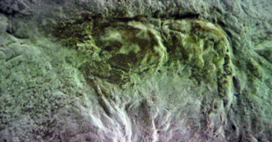 17.jan.2013 - Pesquisadores da Urca (Universidade Regional do Cariri) encontraram o primeiro fóssil de camarão do Brasil na cidade de Missão Velha, no Cariri cearense, que está na Bacia Sedimentar do Araripe. A estimativa é que ele tenha mais de 100 milhões de anos. O estudo afirma que a descoberta  paleontológica, inédita no mundo, evidencia que o sertão nordestino já foi mar na antiguidade