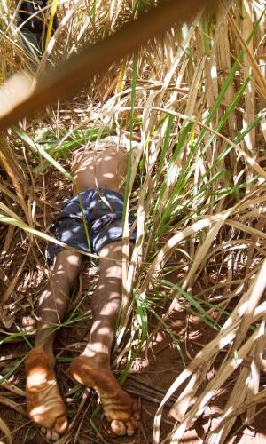 17.jan.2013 - Um corpo é encontrado dentro de canavial perto da rodovia Anhanguera em Ribeirão Preto (SP), na manhã desta quinta-feira (17). Segundo a Polícia Militar, a suspeita é que o homem estaria roubando um fio de cobre quando foi alvejado. O corpo apresentava dois tiros, um nas costas e outro na cabeça. Não foi encontrado nenhum documento de identificação