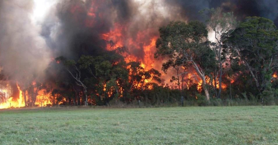 18.jan.2013 - Imagem do Serviço de Bombeiros da Austrália mostra incêndio florestal que atinge Melbourne, cerca de 120 km ao norte de Sydney, nesta sexta-feira (18)