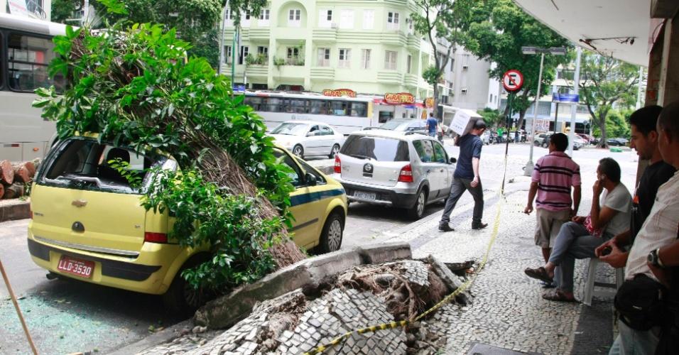 26.jan.2013 - Árvore cai sobre táxi na avenida Prado Junior, em Copacabana, no Rio de Janeiro