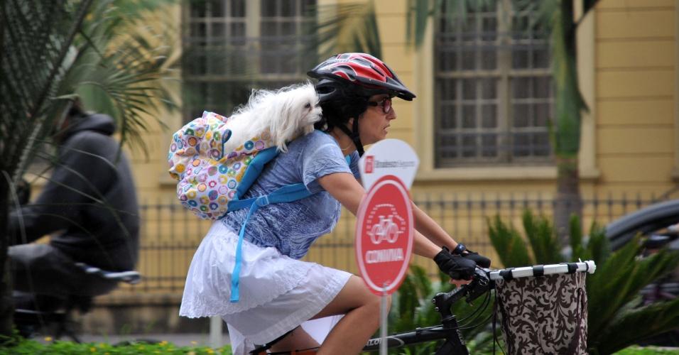 27.jan.2013 - Mulher carrega cachorro enquanto anda de bicicleta na avenida Paulista, em São Paulo, na tarde deste domingo (27)