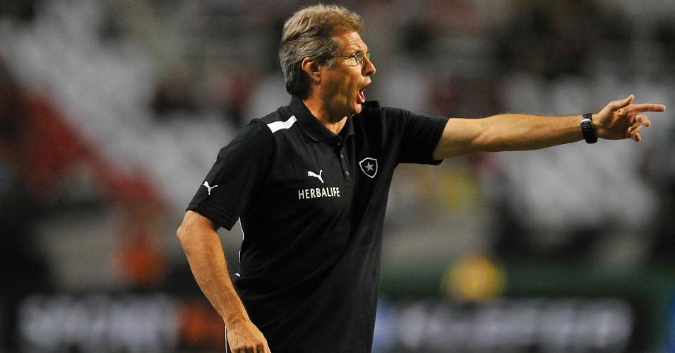 27.jan.2013 - Técnico Oswaldo de Oliveira orienta os jogadores do Botafogo durante o clássico contra o Fluminense, pela terceira rodada do Estadual do Rio