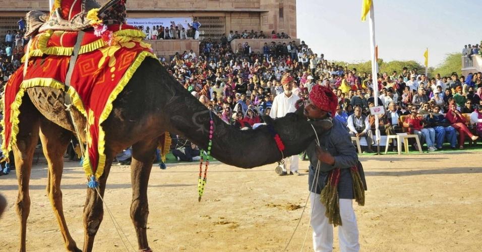 28.jan.2013 - Camelo morde o pescoço de seu dono durante o Festival Internacional de Camelos, na cidade de Bikaner, no estado indiano de Rajasthan, nesta segunda-feira (28)