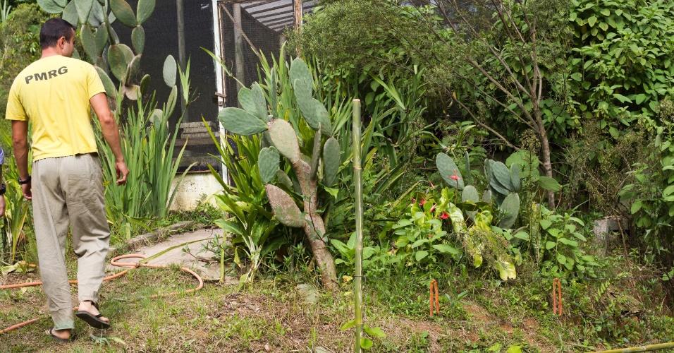 28.jan.2013 - Detento caminha para dentro da estufa onde são produzidas as mudas de hortaliças que posteriormente serão plantadas na horta. As verduras e legumes são comercializados para o público externo
