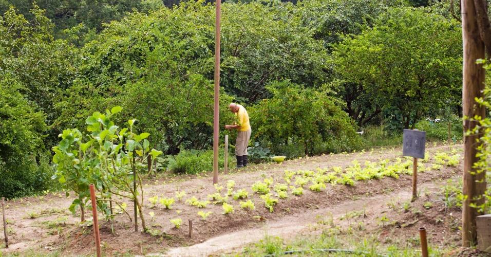 28.jan.2013 - Preso trabalha no pomar ao lado da horta do presídio. As verduras, legumes e frutas plantados no local são comercializados para o público externo