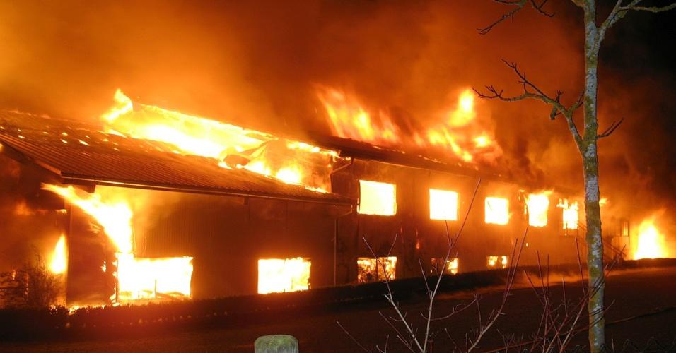 31.jan.2013 - Um incêndio em uma fazenda de Rotfelden, no sudoeste da Alemanha, matou 85 camelos. Os bombeiros só conseguiram salvar cinco animais da instalação localizada na Selva Negra. As causas do incêndio ainda são desconhecidas, segundo a polícia