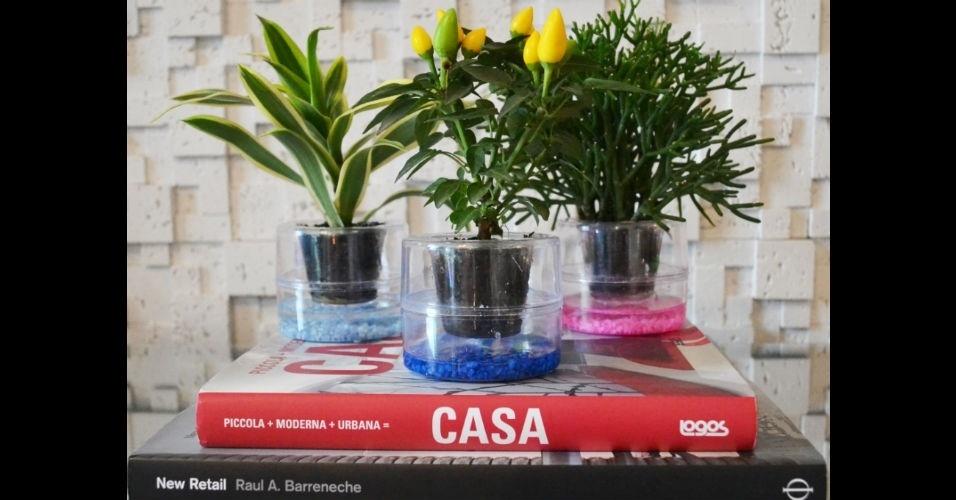 Vasos de plástico incolor e transparentes com pedrinhas coloridas acomodam as plantas que decoram a sala de estar neste projeto da arquiteta Andrea Pontes