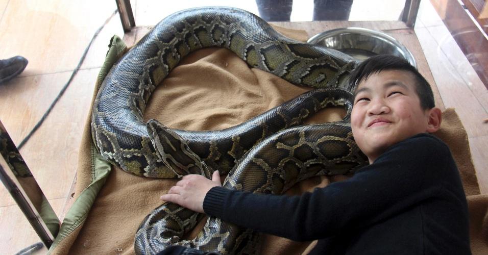 4.fev.2013 - O jovem Li Tianzeng brinca com cobra de estimação em um parque, na cidade de Foshan, na China, na segunda-feira (4). O garoto de 11 anos vai passar 15 dias em uma jaula de vidro com a cobra para bater o recorde mundial de convivência com o animal