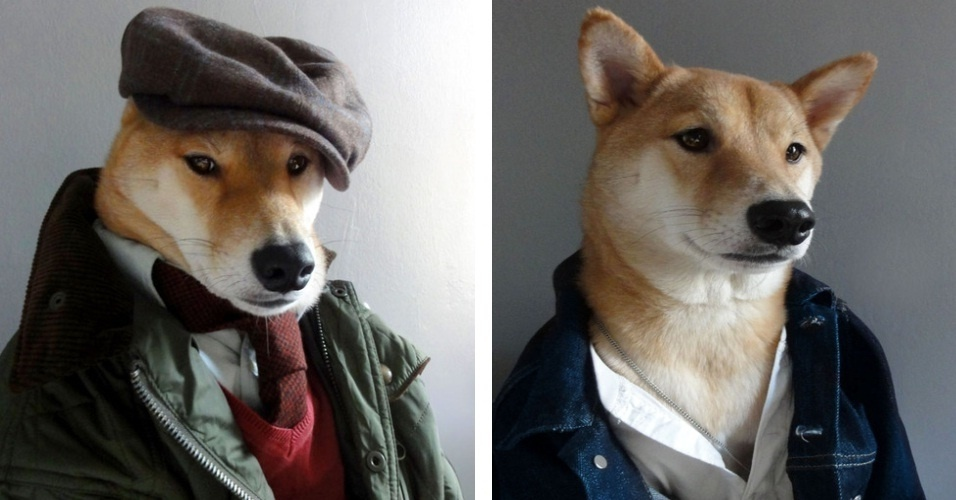 """O Tumblr """"Mensweardog"""" publica imagens de um cachorro vestido como homem de verdade, incluindo acessórios como jaquetas, gravatas, bonitas e até roupa social. Seja descola ou mais certinho, o dono do blog aproveita a pinta de modelo do cãozinho para fazer propaganda das marcas de roupas"""