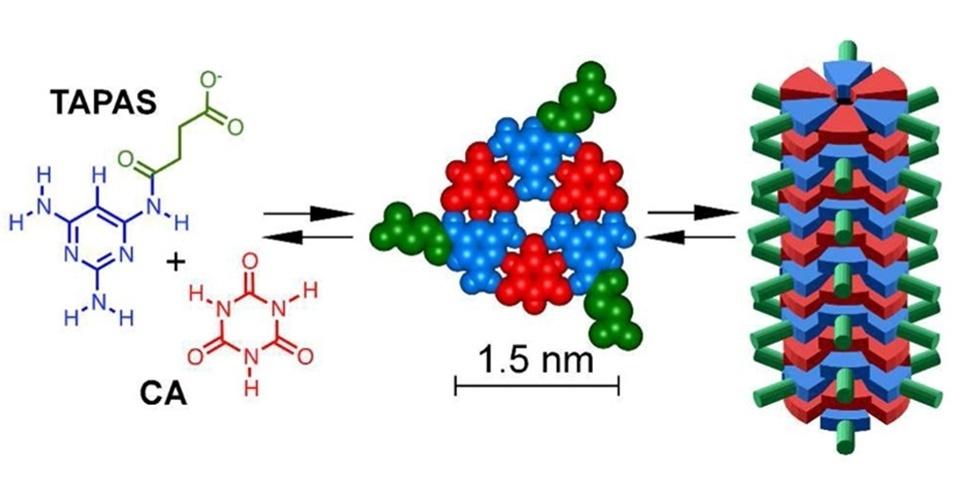 13.fev.2013 - Ilustração mostra processo de transformação de moléculas simples, semelhantes às do RNA, em uma cadeia complexa, como as do DNA, que pode explicar origem da vida. Depois que as moléculas do elemento TAP (azul) ganham uma 'perna' química (verde), transformando-o em um novo elemento, ele consegue se ligar ao CA (vermelho) na água, formando anéis que são empilháveis em cadeias
