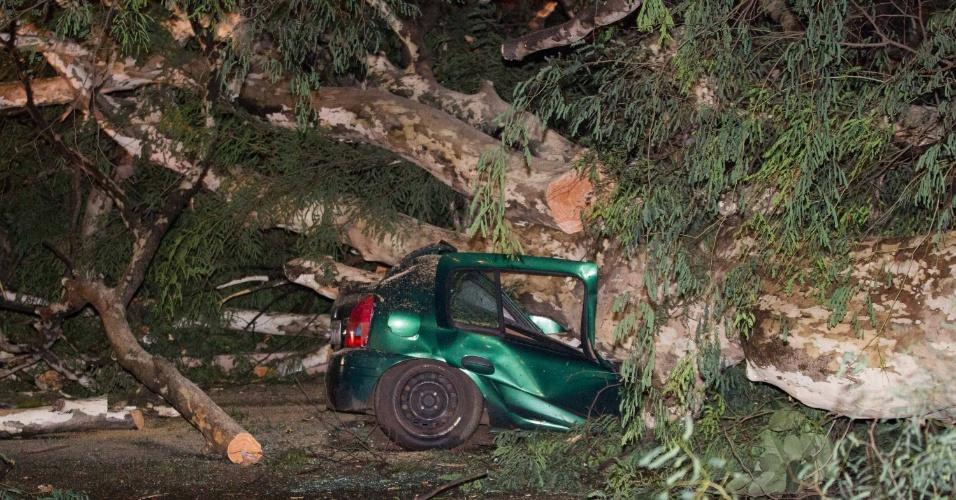 19.fev.2013 - Um temporal que atingiu a cidade de Ribeirão Preto (SP) nesta terça feira (19) causou destruição por toda a cidade, com queda de árvores. Ao menos quatro pessoas ficaram feridas