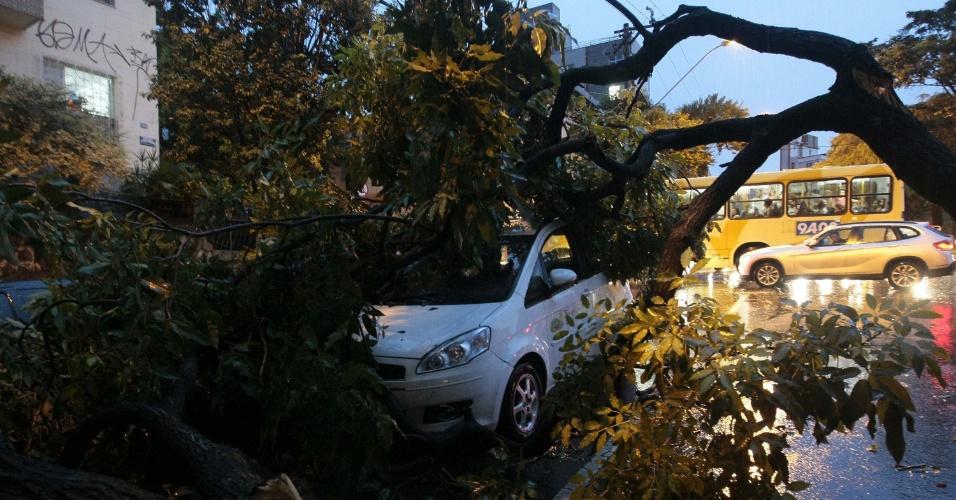 27.fev.2013 - O temporal que atingiu Belo Horizonte (MG) no fim da tarde desta quarta-feira (27) provocou queda de árvores, falta de energia elétrica e outros estragos em vários pontos da cidade. A chuva afetou o trânsito na capital e em municípios vizinhos