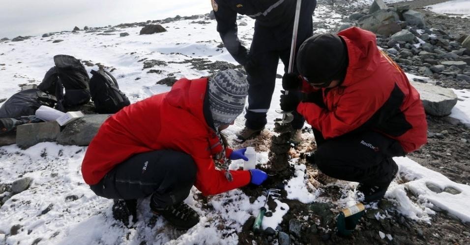 4.mar.2013 - A francesa Léa Cabrol (agachada à esquerda), pesquisadora da Universidade Católica de Valparaíso (Chile), colhe amostras de sedimentos depositados sob uma fina camada de gelo, na Ilha Rei George, na Antártida, pois há uma rica flora microbiana no subsolo do continente gelado que pode transformar os esgotos das cidades em canais de água limpa. Segundo ela, as bactérias são eficientes já que podem metabolizam a matéria orgânica dos esgotos em alta velocidade - e, de quebra, gerar gás metano para uso industrial