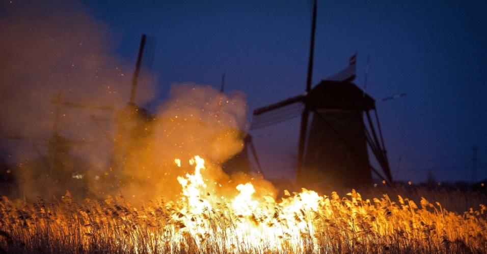 5.mar.2013 - Um incêndio atinge uma área do tamanho de quatro campos de futebol próxima à Alblasserdam, em Kinderdijk, na Holanda, nesta terça-feira. A causa do incêndio ainda é desconhecida