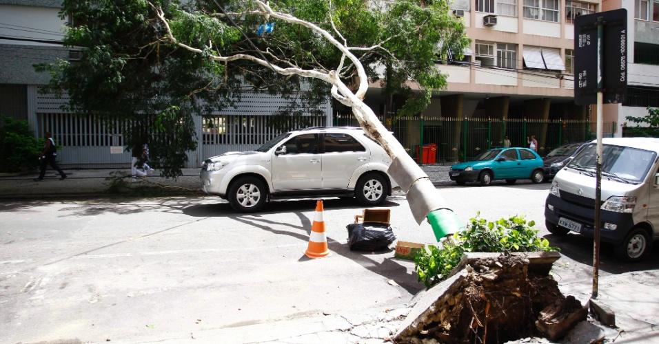 6.mar.2013 - Árvore cai e bloqueia rua nesta quarta-feira (6), após a forte chuva que atingiu o Rio de Janeiro na noite de terça (5). A população da cidade ainda enfrenta problemas por causa da tempestade de ontem. Pelo menos quatro pessoas morreram
