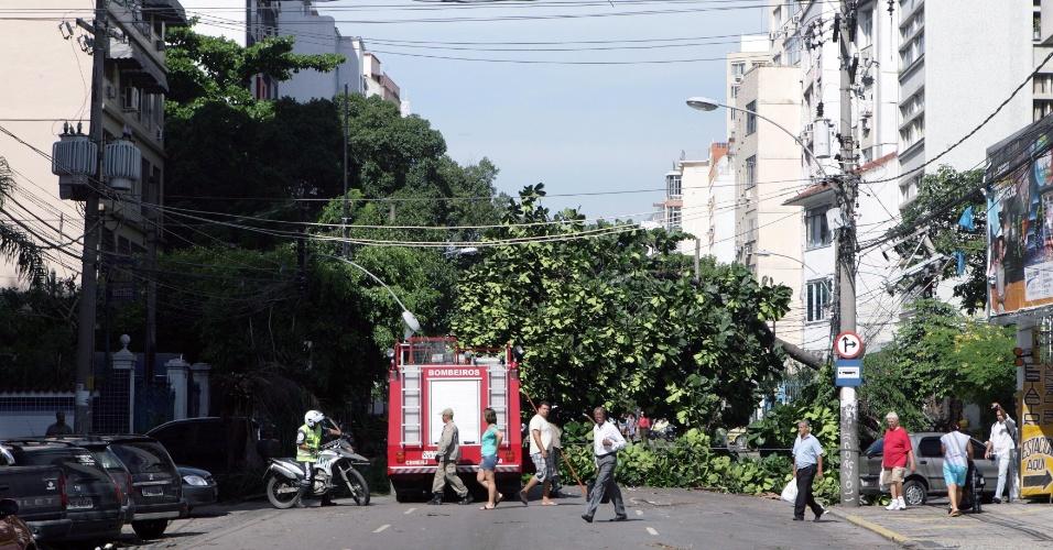 6.mar.2013 - Árvore cai e bloqueia rua nesta quarta-feira (6), no bairro Tijuca, após a forte chuva que atingiu o Rio de Janeiro na noite de terça (5). A população da cidade ainda enfrenta problemas por causa da tempestade de ontem. Pelo menos quatro pessoas morreram