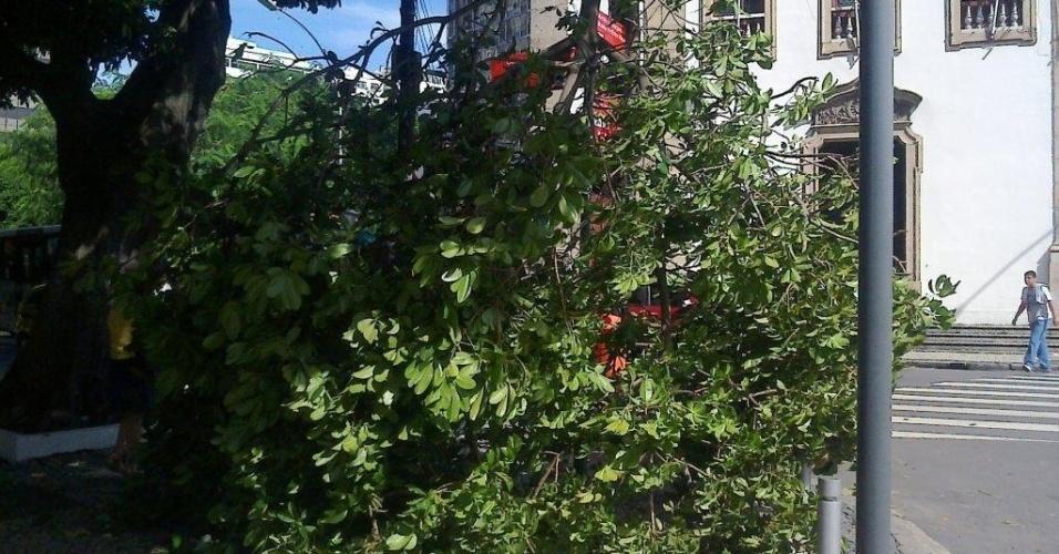 6.mar.2013 - Árvores caíram e ruas ficaram alagadas nesta quarta-feira (6) após a forte chuva que atingiu o Rio de Janeiro na noite de terça (5). A população da cidade ainda enfrenta problemas por causa da tempestade de ontem. Pelo menos quatro pessoas morreram