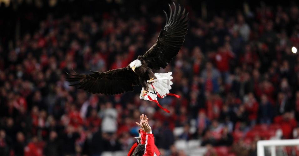 07.mar.2013 - Águia Vitória, mascote do Benfica, voa pelo estádio da Luz antes da partida contra o Bordeaux, pelas oitavas da Liga Europa