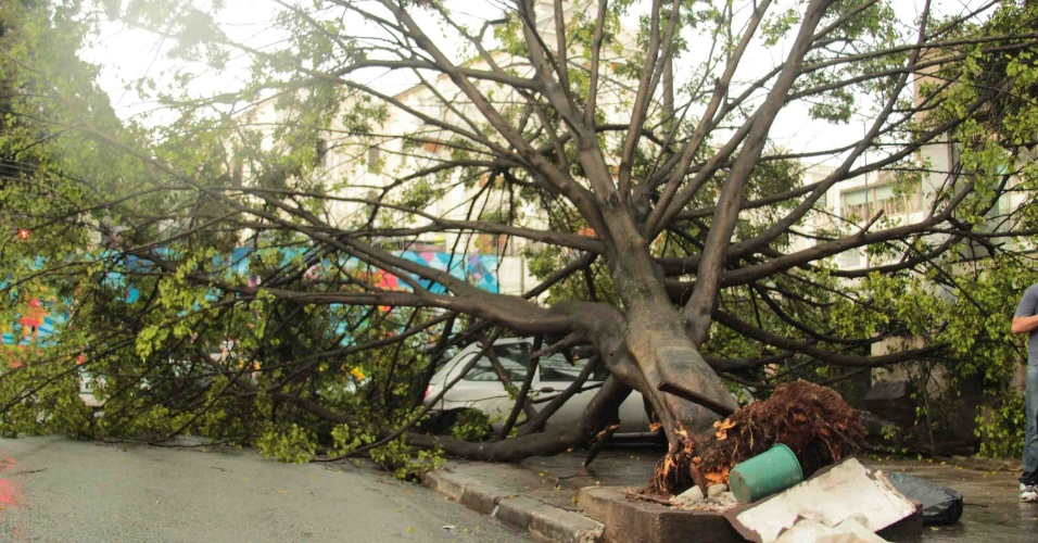 8.mar.2013 - Árvore cai sobre carro na esquina da rua Henrique Schaumann, com rua Cardeal Arcoverde, em São Paulo (SP), na tarde desta sexta-feira, após uma forte chuva atingir a cidade. Ninguém se feriu